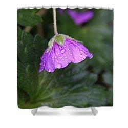 Rain Kissed Shower Curtain by Lynn-Marie Gildersleeve