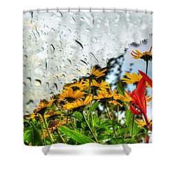 Rain Rain Go Away... Shower Curtain
