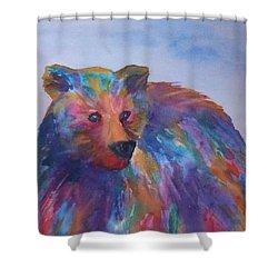 Rainbow Bear Shower Curtain by Ellen Levinson