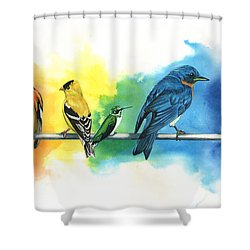 Rainbow Birds Shower Curtain by Antony Galbraith