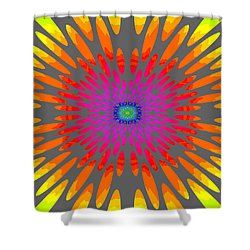 Rainbow Daisy Mandala  C2014  Shower Curtain