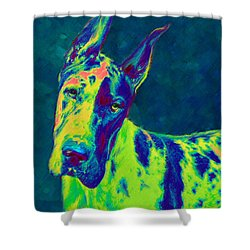 Rainbow Dane Shower Curtain by Jane Schnetlage