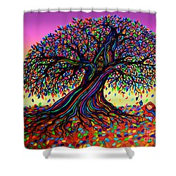 Rainbow Dreams And Falling Leaves Shower Curtain by Nick Gustafson