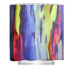 Rainbow Eucalyptus 2 Shower Curtain