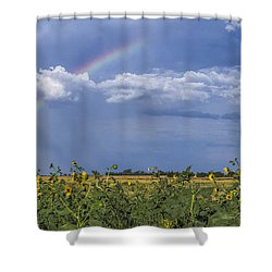 Rainbow Over Sunflowers Shower Curtain by Rob Graham