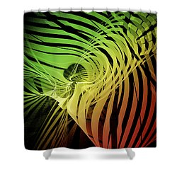 Rainbow Ribs Shower Curtain by Richard J Cassato