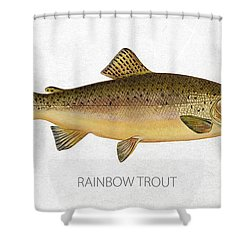 Rainbow Trout Shower Curtain by Aged Pixel