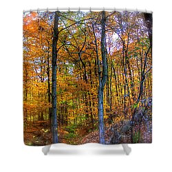 Rainbow Woods Shower Curtain