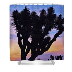Shower Curtain featuring the photograph Rainbow Yucca by Angela J Wright