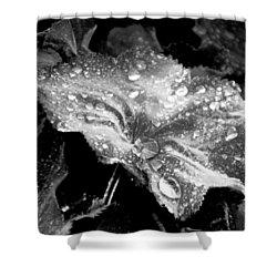 Raindrop Covered Leaf Shower Curtain