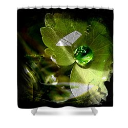 Shower Curtain featuring the photograph Raindrop by Nick Kloepping