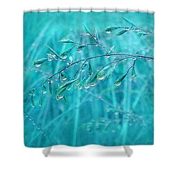 Shower Curtain featuring the photograph Raindrops Falling On Teal Blue Grasses by Jennie Marie Schell