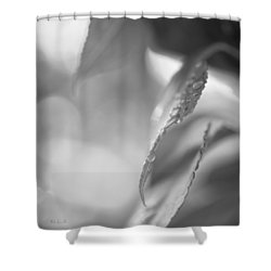 Raindrops Two Shower Curtain by Bob Orsillo