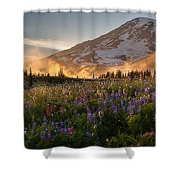Rainier Golden Light Sunset Meadows Shower Curtain