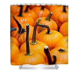 Shower Curtain featuring the photograph Rainy Day Pumpkins by Ira Shander