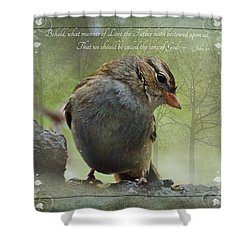Rainy Day Sparrow With Verse Shower Curtain