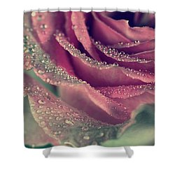 Rainy Days Of Rose Shower Curtain