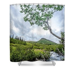 Rainy Evening On A Mountain Stream Shower Curtain