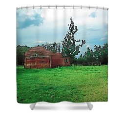 Rainy Pasture Shower Curtain by Terry Reynoldson