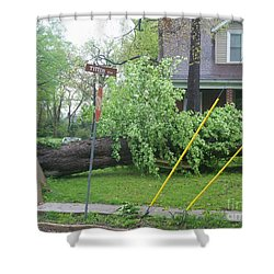 Raised Sidewalks Shower Curtain by Kelly Awad