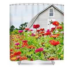 Raising Zinnia Flowers - Delaware Shower Curtain