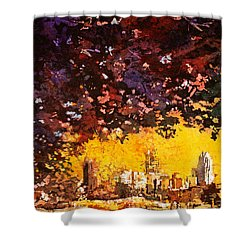 Raleigh Downtown Shower Curtain