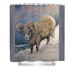 Shower Curtain featuring the painting Ram In The Snow by Donna Tucker