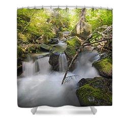 Ramona Creek Shower Curtain by David Gn