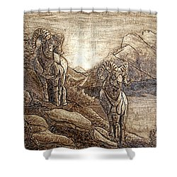Rams Relief Shower Curtain by Wendy McKennon