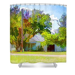 Ranch House Painting Shower Curtain
