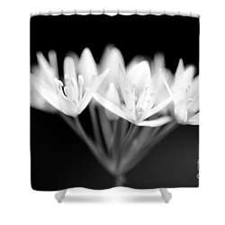 Ransome Photo 1 Shower Curtain