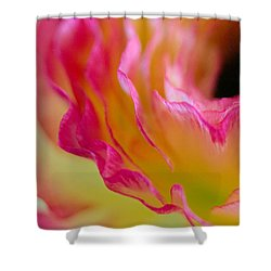 Ranunculus Ruffles Shower Curtain