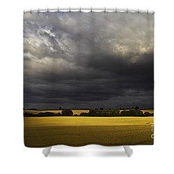 Rapefield Under Dark Sky Shower Curtain by Heiko Koehrer-Wagner