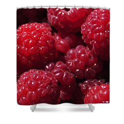 Raspberry Crave Shower Curtain by Elena Hasnas