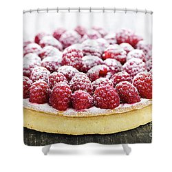 Raspberry Tart Shower Curtain by Elena Elisseeva