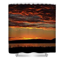 Rathtrevor Sunrise Shower Curtain