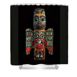 Raven And Saxman Totem Shower Curtain