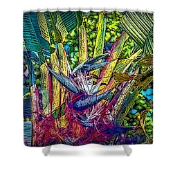 Shower Curtain featuring the photograph Ravenala by Hanny Heim