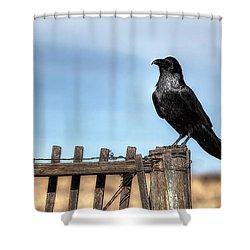 Ravenous Pride Shower Curtain