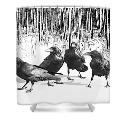 Ravens By The Edge Of The Woods In Winter Shower Curtain