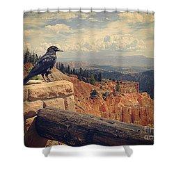 Raven's Eye View Shower Curtain by Meghan at FireBonnet Art