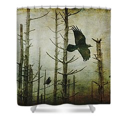 Ravens Of The Mist Artistic Expression Shower Curtain by Randall Nyhof