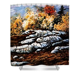 Raw North Shower Curtain by Hanne Lore Koehler