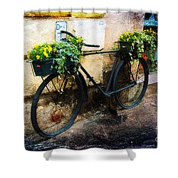 Re-cycle Shower Curtain
