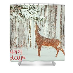 Reach For It Happy Holidays Shower Curtain by Karol Livote