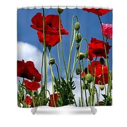 Reach For The Sky Shower Curtain by Baggieoldboy