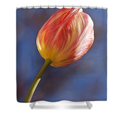Reach For The Sky Shower Curtain by Dee Cresswell