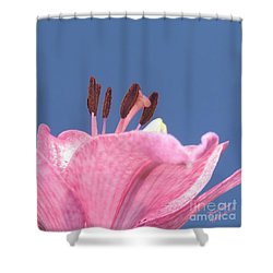 Reach For The Sky - Signed Shower Curtain