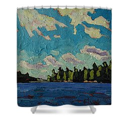 Reach To Grippen Shower Curtain by Phil Chadwick