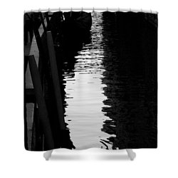 Reaching Back - Venice Shower Curtain by Lisa Parrish